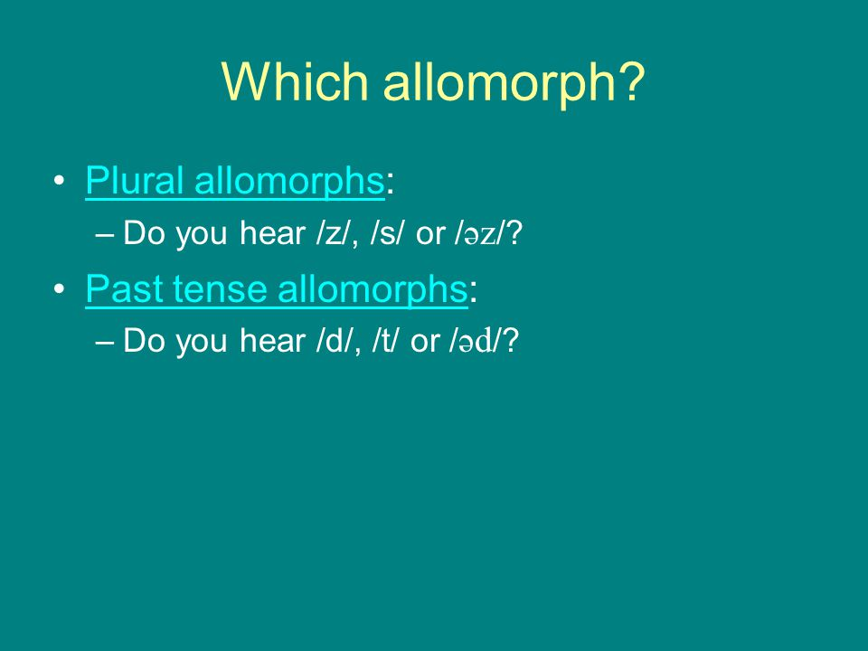 Which allomorph Plural allomorphs: Past tense allomorphs: