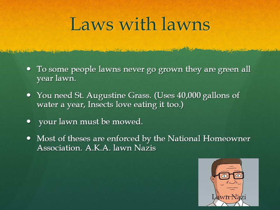 Laws with lawns To some people lawns never go grown they are green all year lawn.