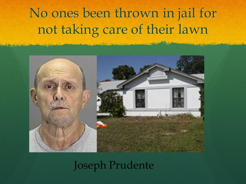 No ones been thrown in jail for not taking care of their lawn