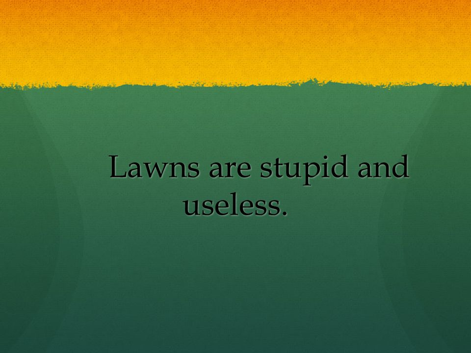 Lawns are stupid and useless.