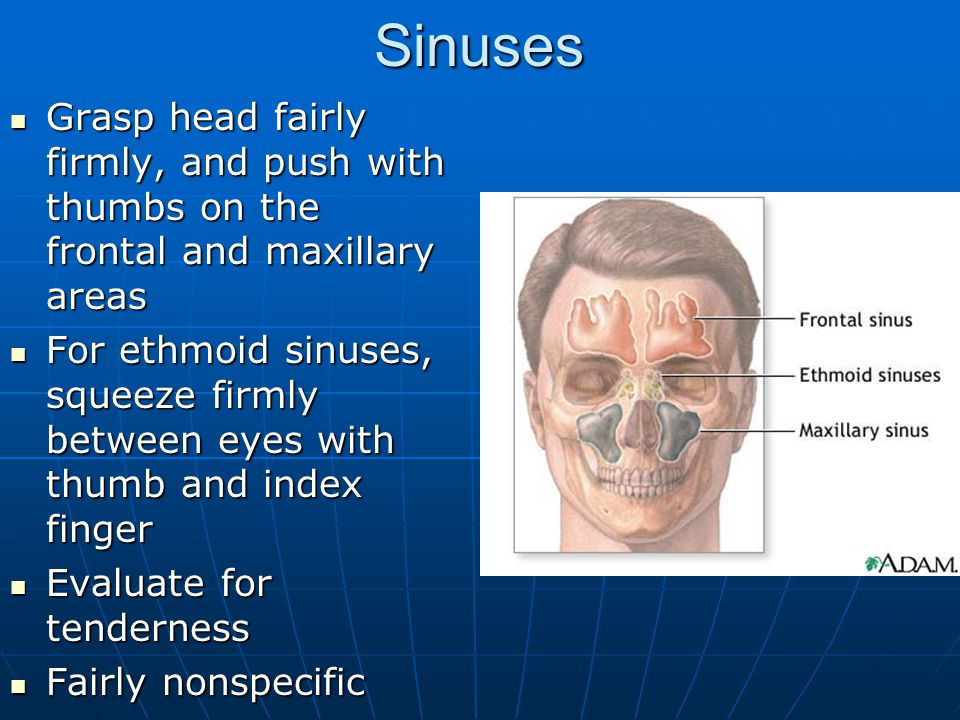 Sinuses Grasp head fairly firmly, and push with thumbs on the frontal and maxillary areas.