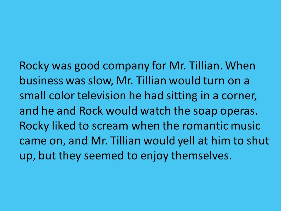 Rocky was good company for Mr. Tillian. When business was slow, Mr