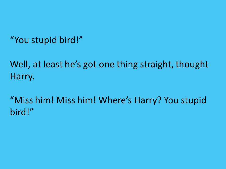 You stupid bird! Well, at least he's got one thing straight, thought Harry.