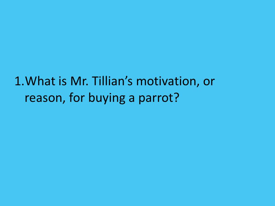 What is Mr. Tillian's motivation, or reason, for buying a parrot