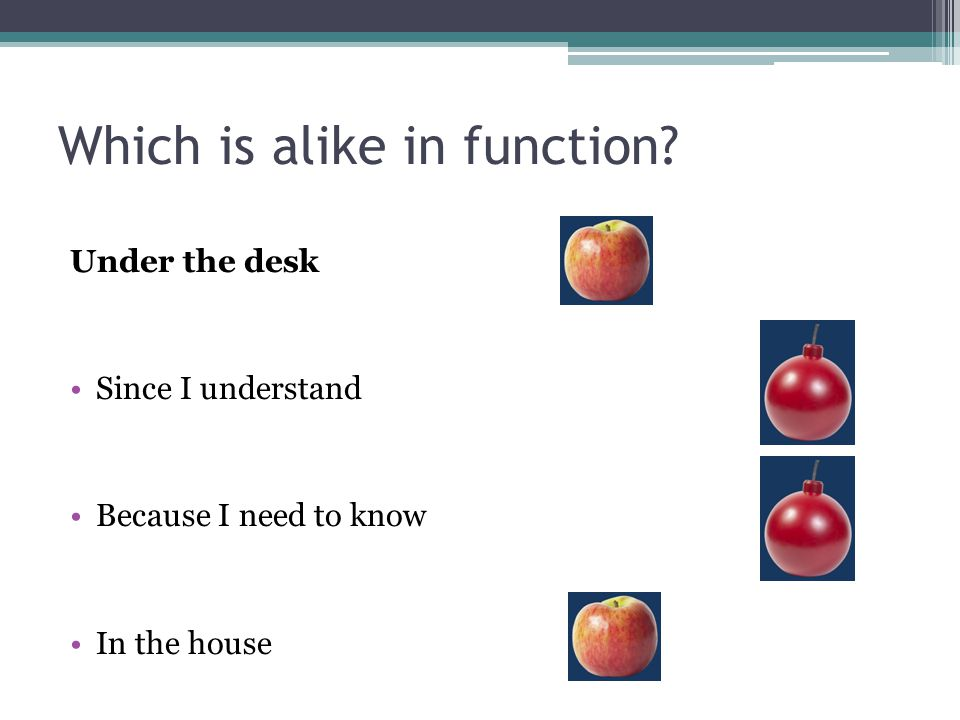 Which is alike in function