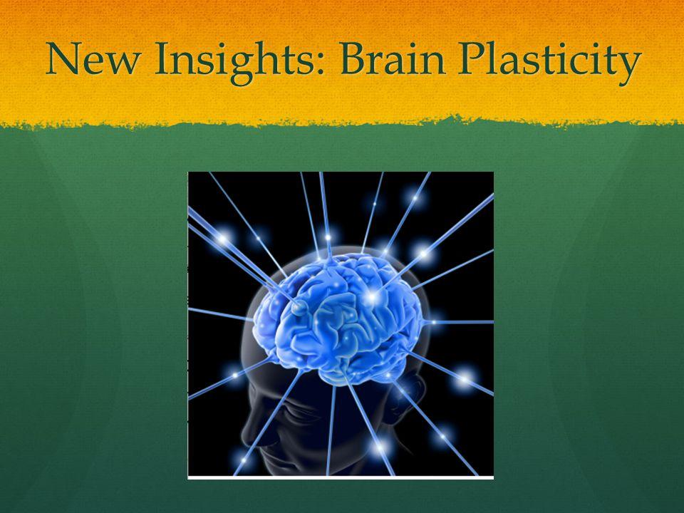 New Insights: Brain Plasticity