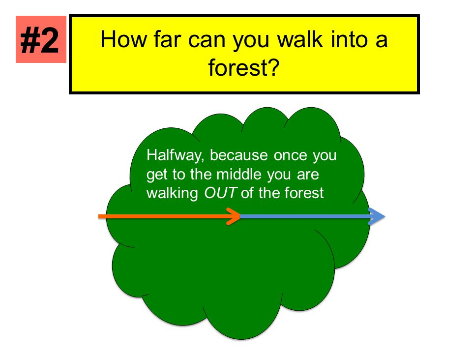 How far can you walk into a forest