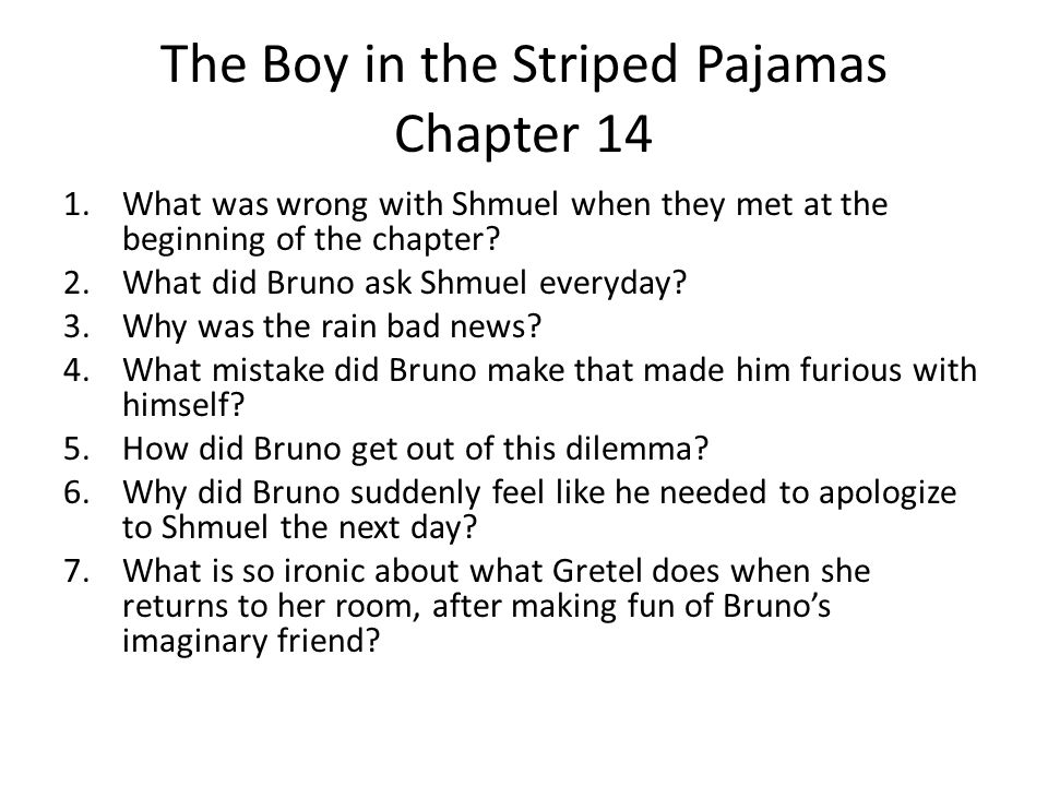 The Boy in the Striped Pajamas Chapter 14
