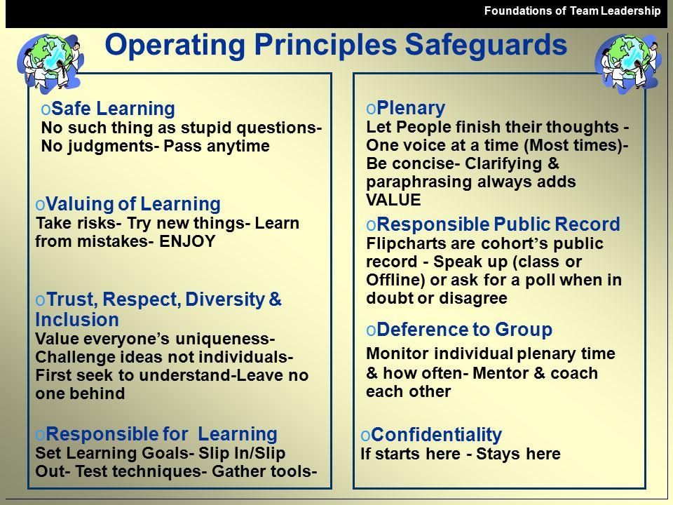 Operating Principles Safeguards