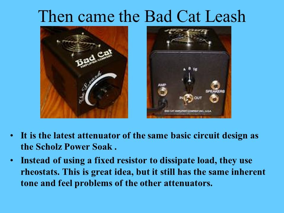 Then came the Bad Cat Leash