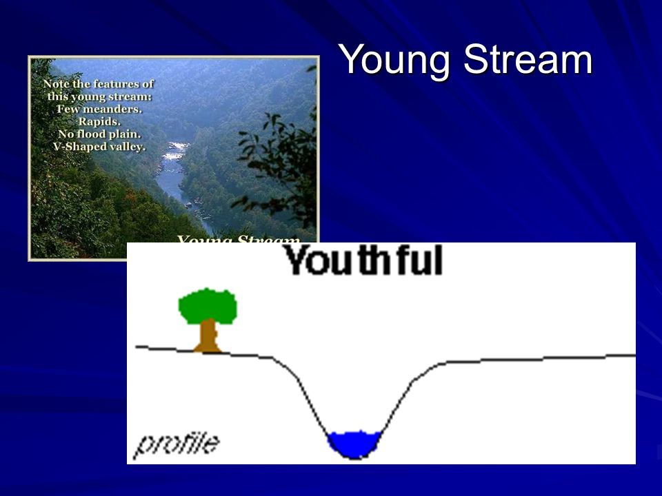Young Stream