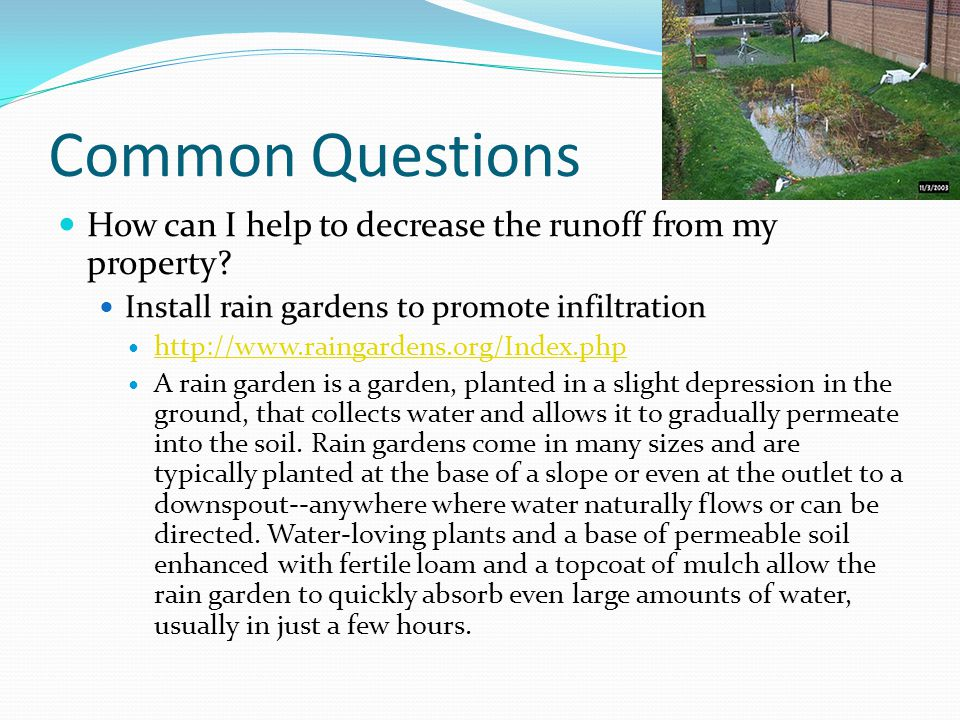 Common Questions How can I help to decrease the runoff from my property Install rain gardens to promote infiltration.