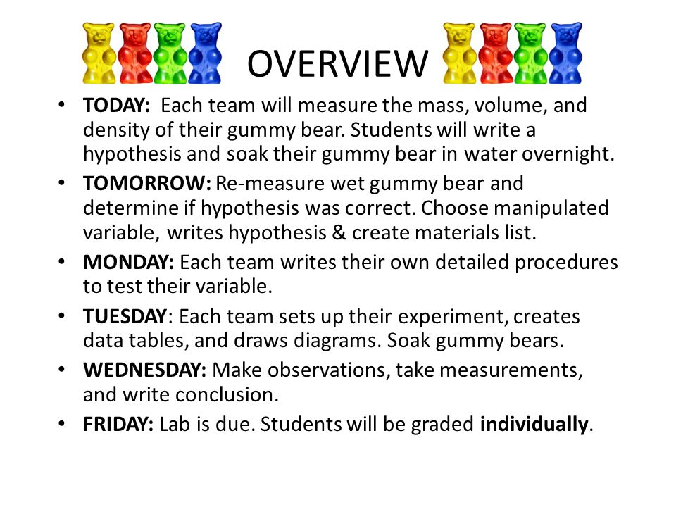 write a hypothesis based on the students observations