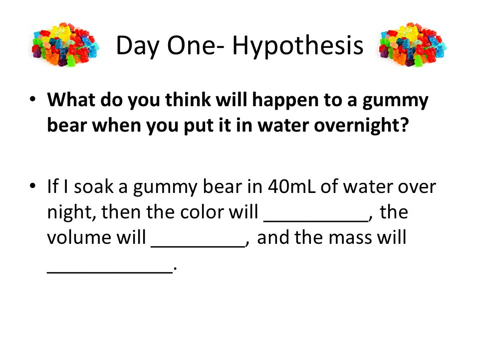 Day One- Hypothesis What do you think will happen to a gummy bear when you put it in water overnight