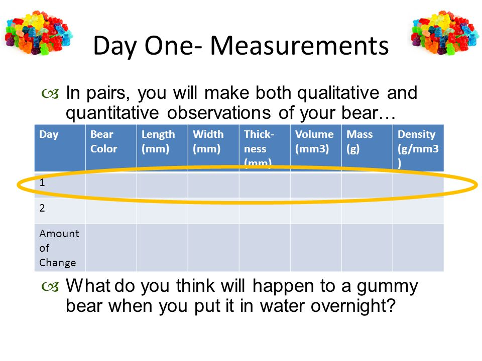 Day One- Measurements In pairs, you will make both qualitative and quantitative observations of your bear…