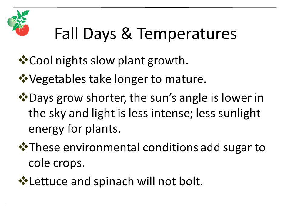 Fall Days & Temperatures