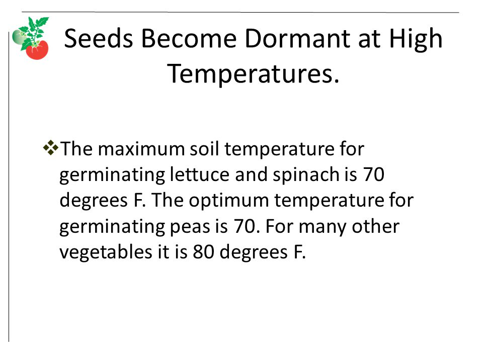 Seeds Become Dormant at High Temperatures.