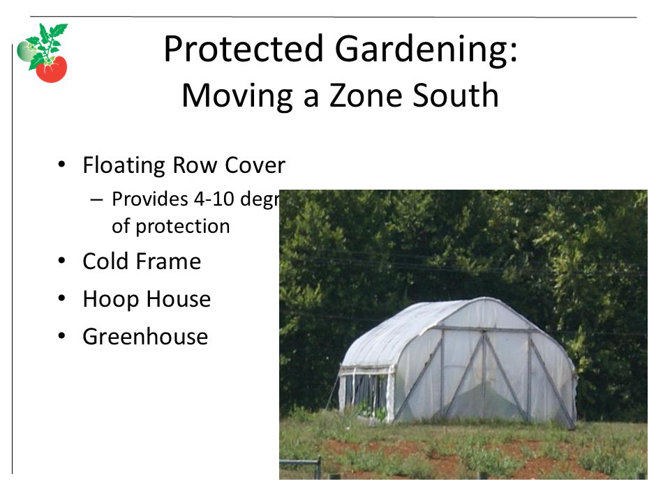 Protected Gardening: Moving a Zone South
