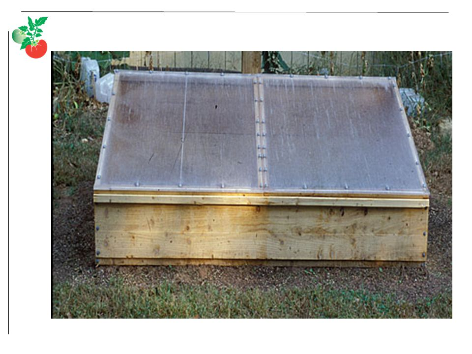 Cold frame with rigid polycarbonate cover.