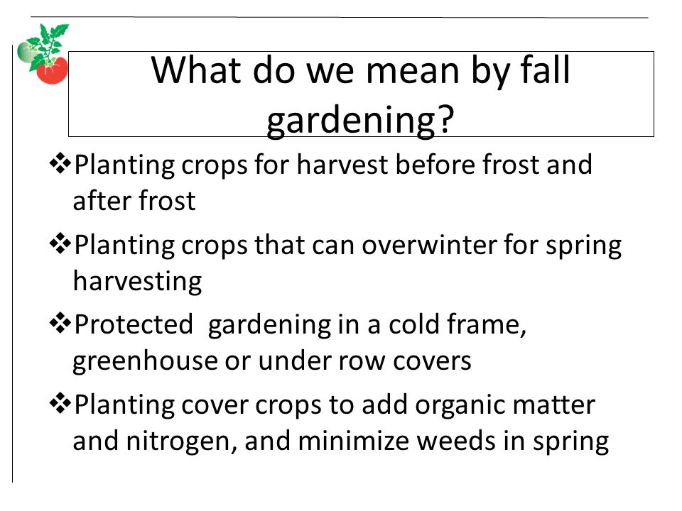 What do we mean by fall gardening