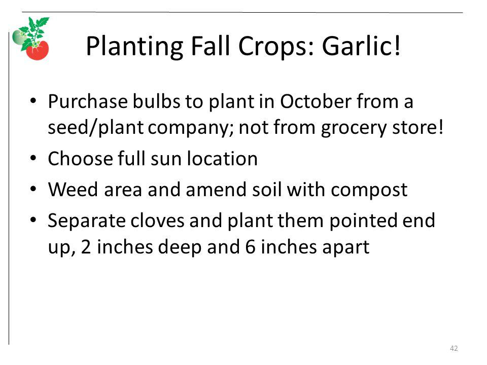 Fall Vegetable Gardening ppt video online download
