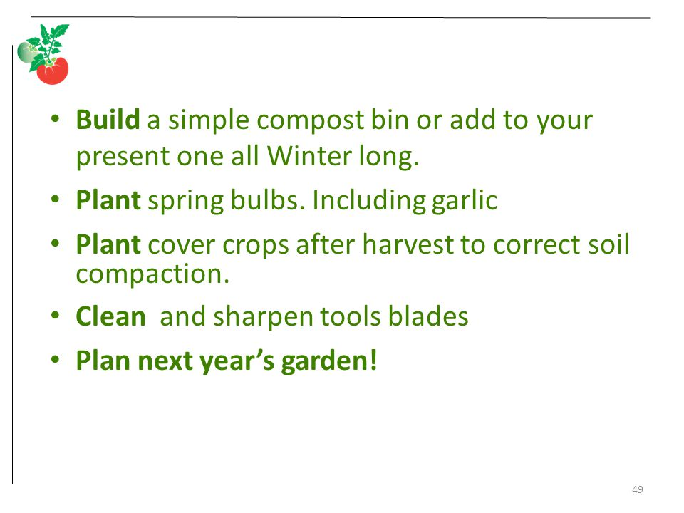Build a simple compost bin or add to your present one all Winter long.