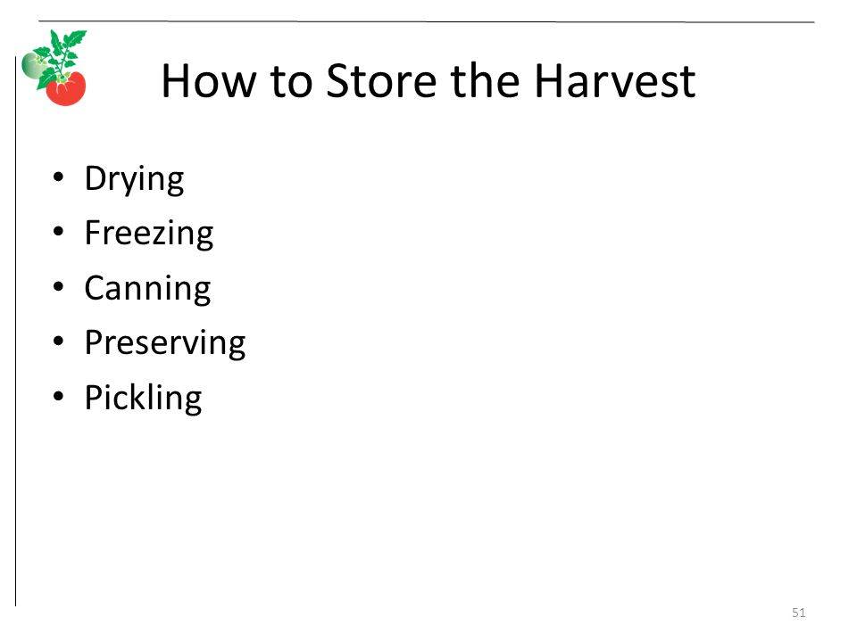 How to Store the Harvest