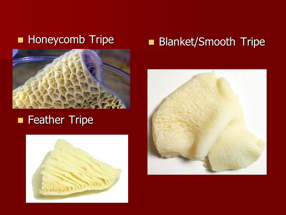 Honeycomb Tripe Feather Tripe Blanket/Smooth Tripe