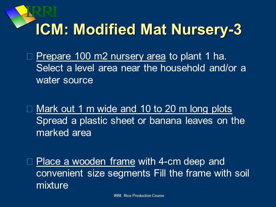 ICM: Modified Mat Nursery-3