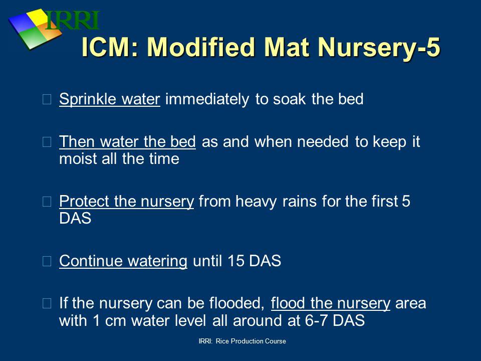 ICM: Modified Mat Nursery-5