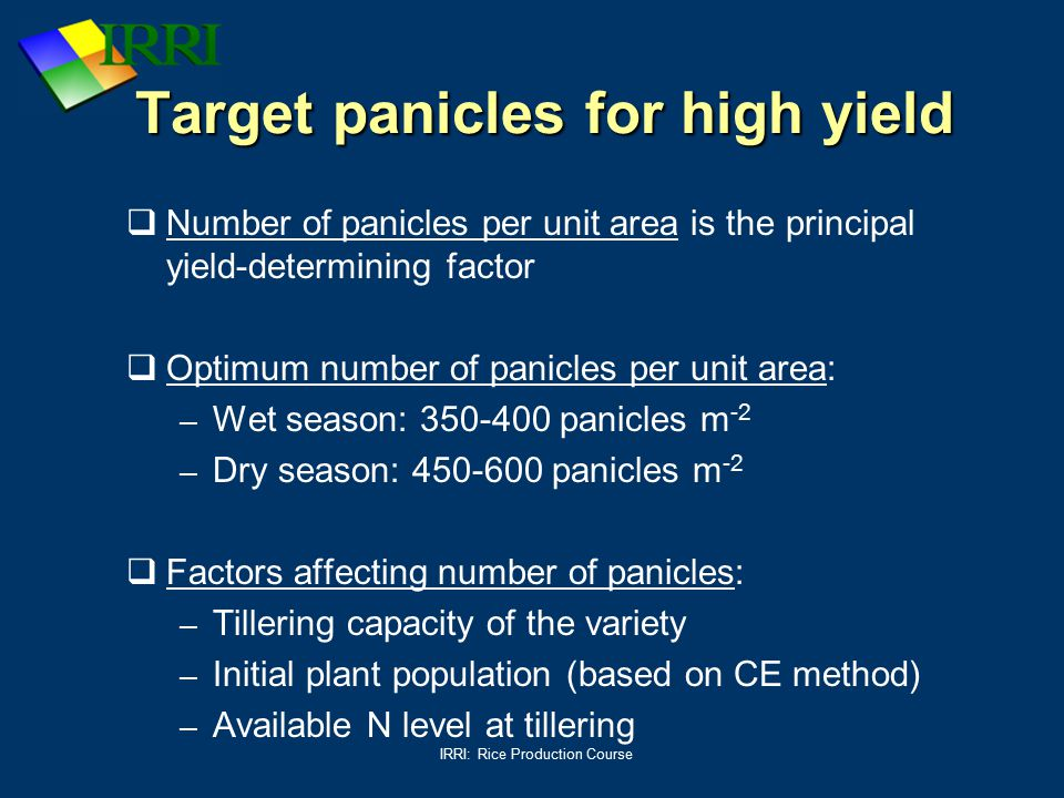 Target panicles for high yield