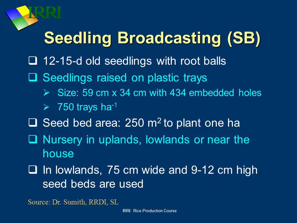Seedling Broadcasting (SB)