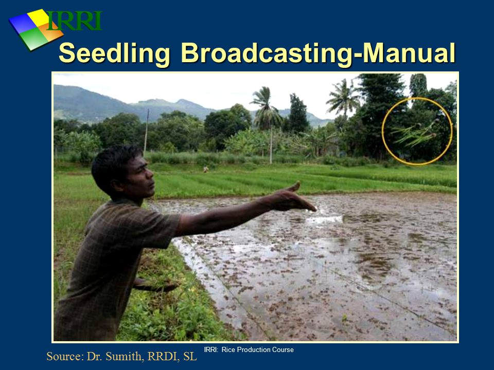 Seedling Broadcasting-Manual