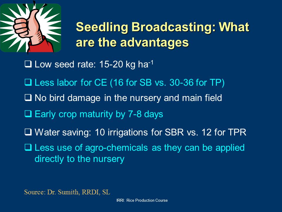 Seedling Broadcasting: What are the advantages