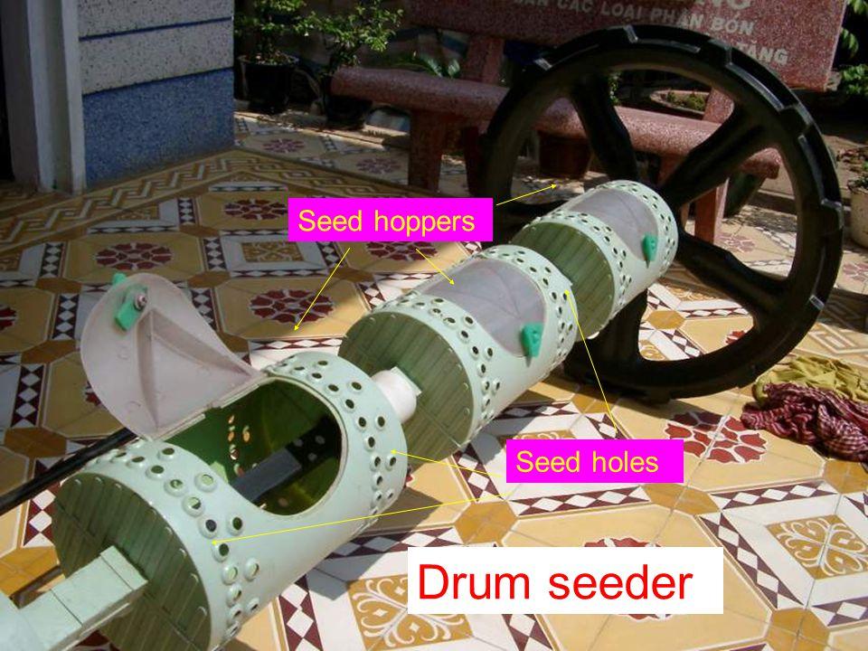Seed hoppers Seed holes Drum seeder