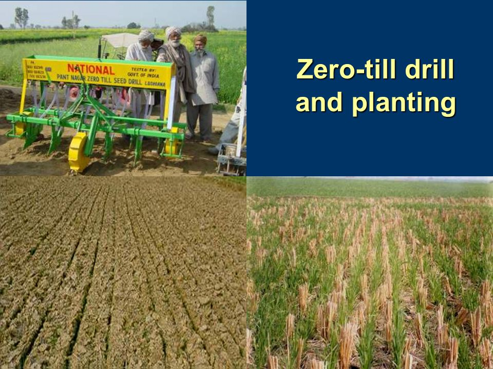 Zero-till drill and planting