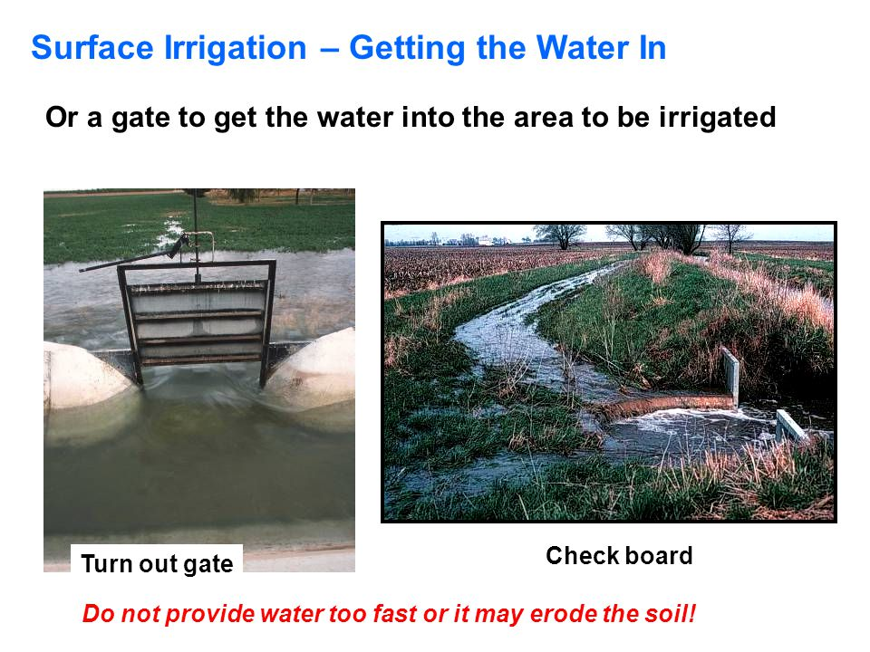 Surface Irrigation – Getting the Water In