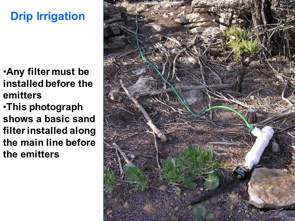 Drip Irrigation Any filter must be installed before the emitters