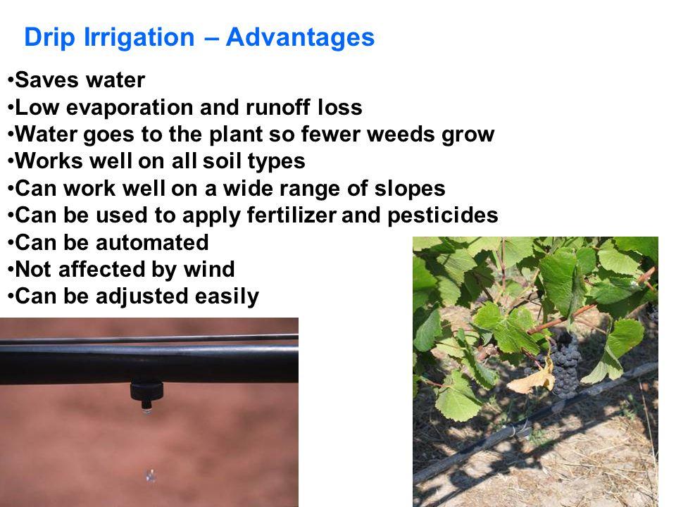 Drip Irrigation – Advantages