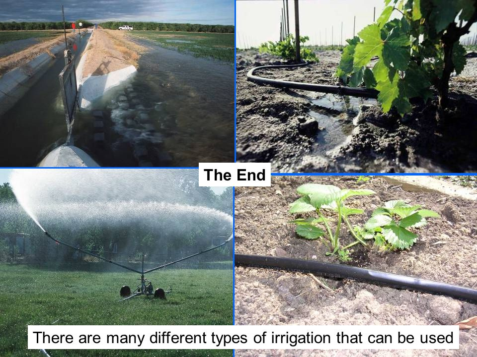 The End There are many different types of irrigation that can be used