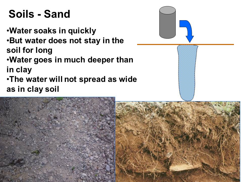 Soils - Sand Water soaks in quickly