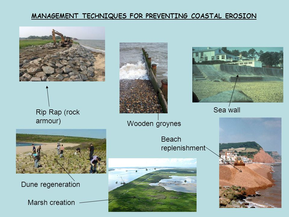 Sea wall Rip Rap (rock armour) Wooden groynes Beach replenishment