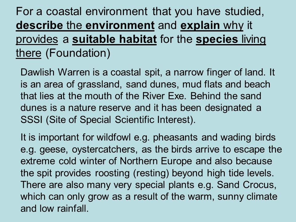 For a coastal environment that you have studied, describe the environment and explain why it provides a suitable habitat for the species living there (Foundation)