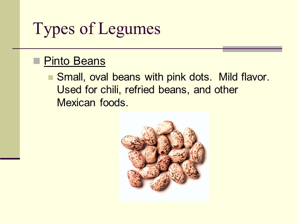 Types of Legumes Pinto Beans