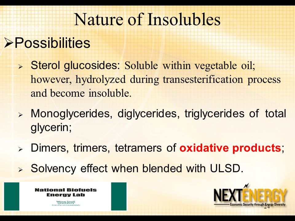 Nature of Insolubles Possibilities