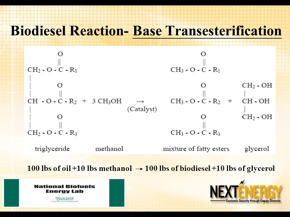 Biodiesel Reaction- Base Transesterification
