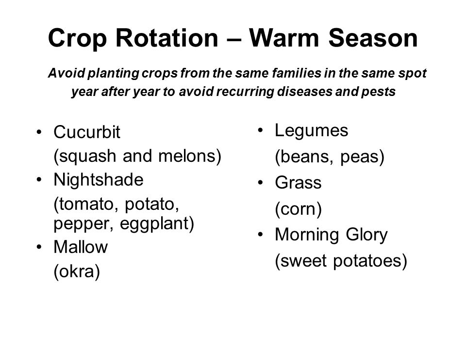 Crop Rotation – Warm Season Avoid planting crops from the same families in the same spot year after year to avoid recurring diseases and pests