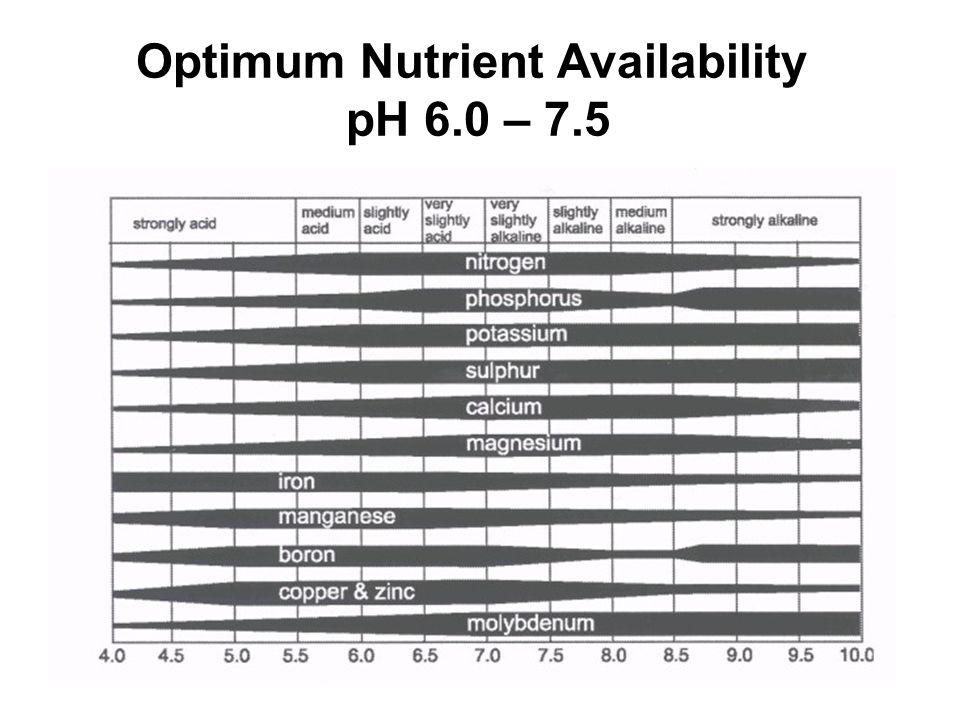 Optimum Nutrient Availability pH 6.0 – 7.5