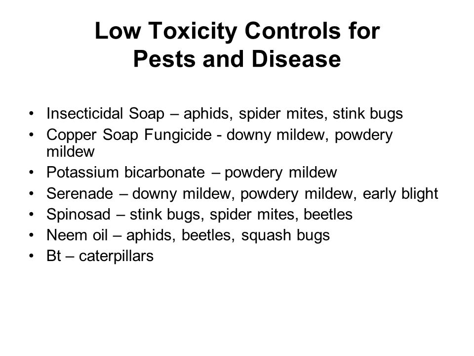 Low Toxicity Controls for Pests and Disease