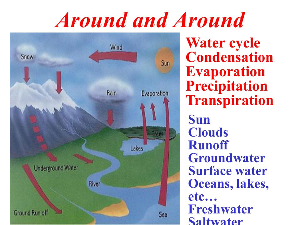 Around and Around Water cycle Condensation Evaporation Precipitation